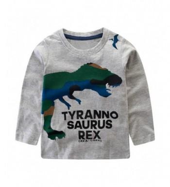 Dinosaur Sweatshirt Toddler Printed Pullover