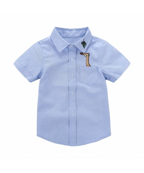 Motecity Fashion Little Turndown Polo Shirt
