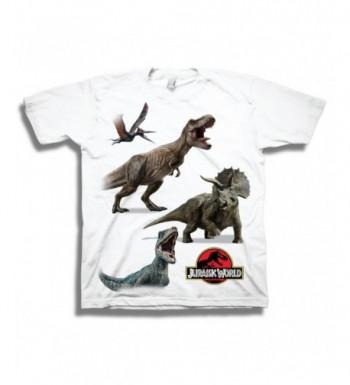 Jurassic Dinosaur Featuring Velociraptor Dinosaurs