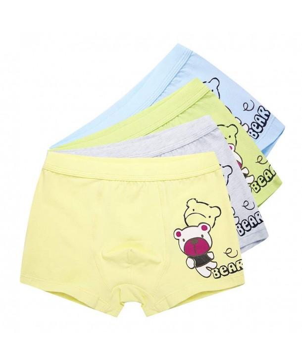 AJOMAN Underwear 4 Pack Lovely Panties